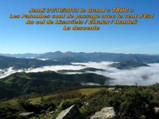 Jeudi 31/10/2013 le Grand «TRUC» Les Palombes sont de passage avec le vent d'Est
