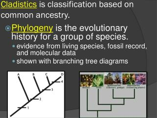 Cladistics  is classification based on common ancestry.