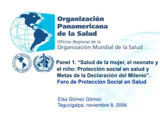 Elsa Gómez Gómez                  Tegucigalpa, noviembre 8, 2006