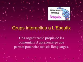 Grups interactius a L'Esquitx