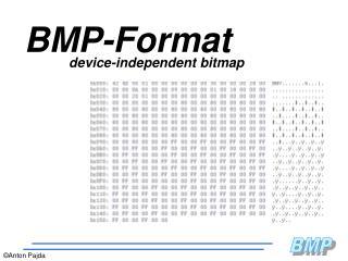 BMP-Format