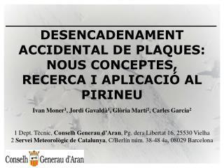 DESENCADENAMENT ACCIDENTAL DE PLAQUES: NOUS CONCEPTES, RECERCA I APLICACI� AL PIRINEU
