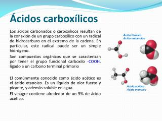 �cidos carbox�licos