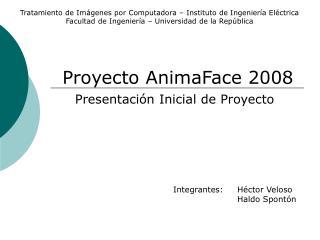 Proyecto AnimaFace 2008