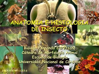 Bi�logo Fernando Carezzano C�tedra de Morfolog�a Animal Escuela de Biolog�a