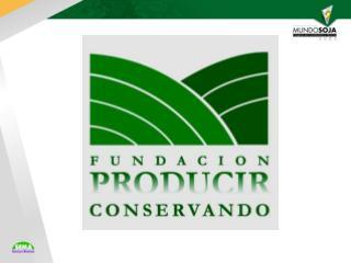 El Complejo Soja en Argentina Su Importancia Económica