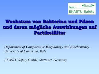 Wachstum von Bakterien und Pilzen  und deren mögliche Auswirkungen auf Partikelfilter