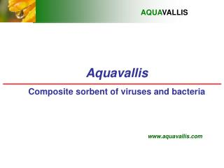 Aquavallis Composite sorbent of viruses and bacteria