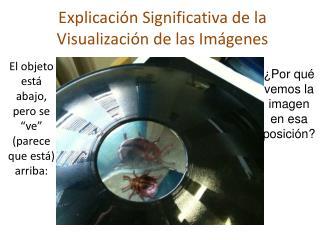 Explicación Significativa de la Visualización de las Imágenes