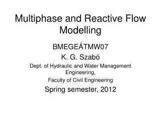 Multiphase and Reactive Flow Modelling