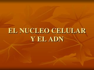 EL NUCLEO CELULAR Y EL ADN