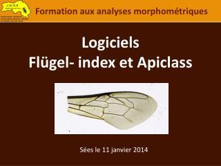 Logiciels Flügel - index et Apiclass
