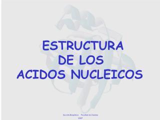 ESTRUCTURA          DE LOS ACIDOS NUCLEICOS