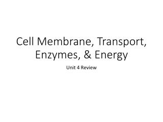 Cell Membrane, Transport, Enzymes, & Energy