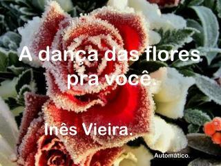 A dança das flores  pra você.