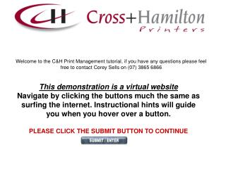 This demonstration is a virtual website