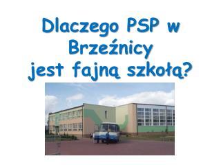 Dlaczego PSP w Brzeźnicy   jest fajną szkołą?