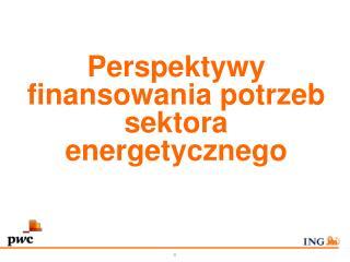 Perspektywy finansowania potrzeb sektora energetycznego