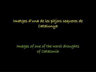 Imatges d'una de les pitjors sequeres de Catalunya