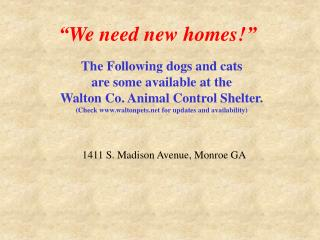 """We need new homes!"""