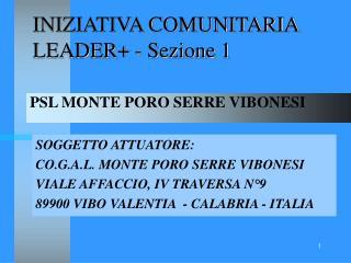 INIZIATIVA COMUNITARIA LEADER+ - Sezione 1