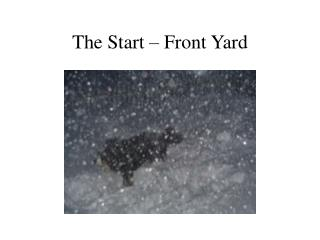 The Start – Front Yard