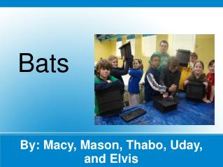 By: Macy, Mason, Thabo, Uday, and Elvis