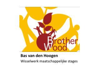 Bas van den Hoogen
