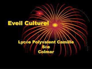 Eveil Culturel