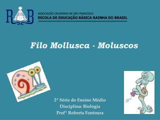 Filo Mollusca - Moluscos