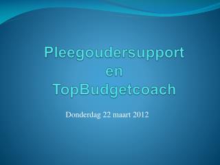 Pleegoudersupport en  TopBudgetcoach