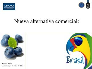 Nueva  alternativa comercial: