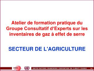 Atelier de formation pratique du Groupe Consultatif d Experts sur les inventaires de gaz   effet de serre    SECTEUR DE