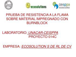 PRUEBA DE RESISTENCIA A LA FLAMA SOBRE MATERIAL IMPREGNADO CON BURNBLOCK