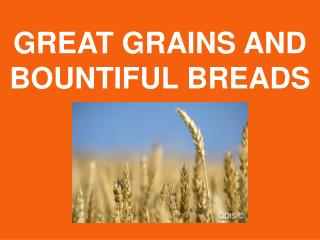 GREAT GRAINS AND BOUNTIFUL BREADS