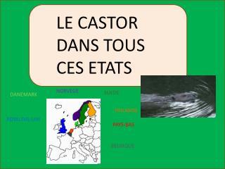 LE CASTOR DANS TOUS CES ETATS
