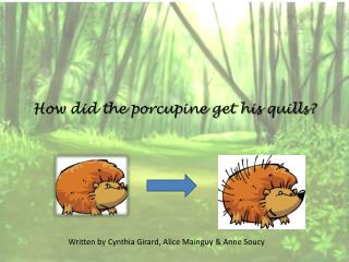 How did the porcupine get his quills?