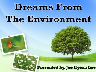 Dreams From  The Environment