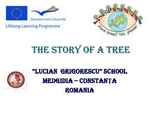 """""""LUCIAN  GRIGORESCU"""" SCHOOL MEDGIDIA – CONSTANŢA ROMANIA"""
