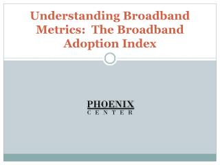 Understanding Broadband Metrics:  The Broadband Adoption Index