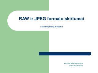 RAW ir JPEG formato skirtumai vizualinių menų mokymai