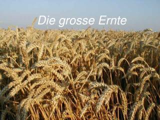 Die grosse Ernte