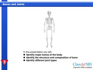 In this presentation you will: Identify major bones of the body