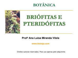 BOT�NICA BRI�FITAS E PTERID�FITAS
