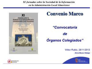 """Convenio Marco """"Convocatoria  de  Órganos Colegiados"""" Vélez-Rubio, 28/11/2013 Alicia Mozos Hidalgo"""