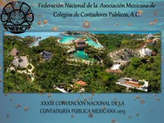 XXXIX CONVENCI�N NACIONAL DE LA  CONTADUR�A P�BLICA MEXICANA 2013