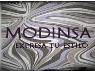 EMPRESA  MODINSA LTDA