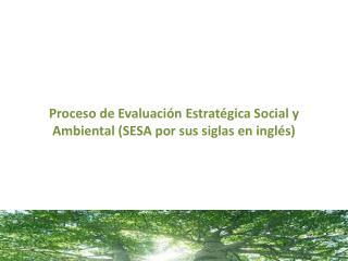 Proceso de Evaluación  Estratégica  Social  y A mbiental  (SESA por sus siglas en inglés)