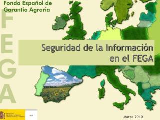 Seguridad de la Información  en el FEGA