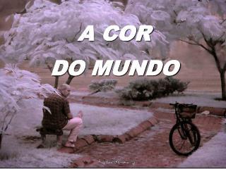 A COR DO MUNDO